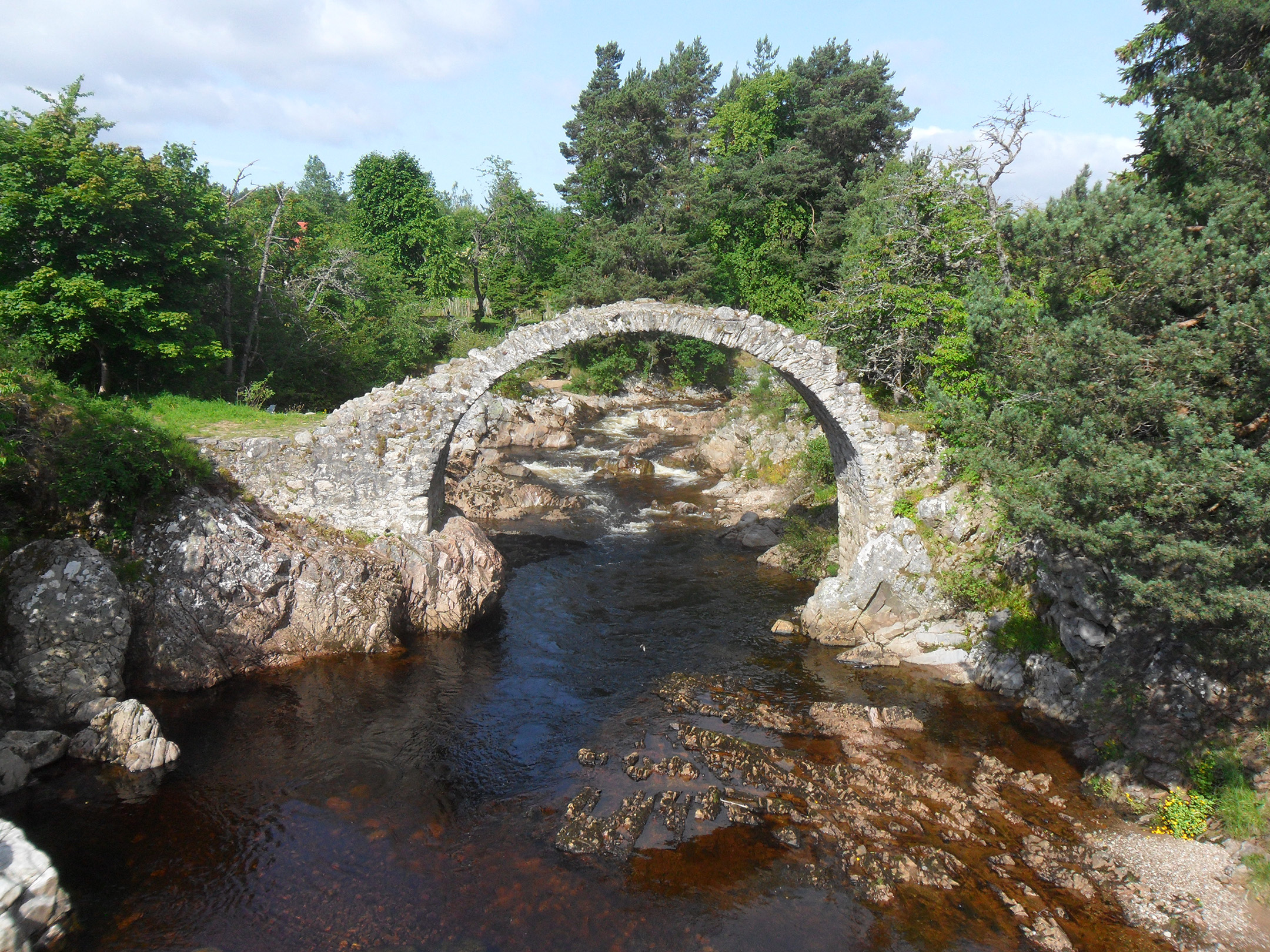 1  past Carrbridge, the oldest.JPG